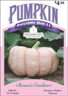 Sam: for Ben: Pumpkin, Porcelain Doll Pink Treats, Porcelain Insulator, Pumpkin Farm, Pink Pumpkins, Seed Packets, Garden Seeds, Flower Farm, Pumpkin Recipes, Porcelain Doll