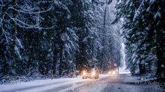 MtBakerRoad - Pinned by Mak Khalaf I took this on the way to Mount Baker Washington during a snow flurry. Travel Mount Bakercoldforestmountainssnowtreeswashingtonwinter by ewath1