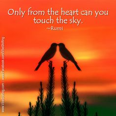 """""""Only from the heart can you touch the sky."""" ~Rumi http://www.facebook.com/VibeShifting"""