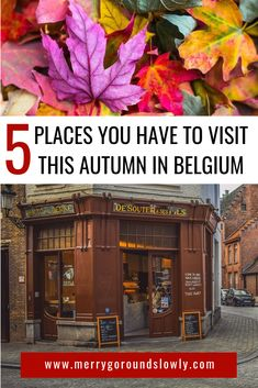 5 Best Places to Visit in Belgium in Autumn – Best Europe Destinations Europe Travel Guide, Europe Destinations, Travel Guides, Europe Europe, Best Places To Travel, Cool Places To Visit, Places To Go, November Holidays, October Fall