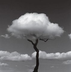 Optical Illusions by Chema Madoz 12 www.facebook.com/pages/Focalglasses/551227474936539 Best Vision in The World!