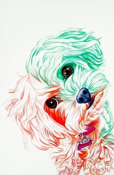 Dogs 2014                                                                                                                                                                                 Mais