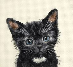 Black cat, kitten, BLANC Bib-COMPLET Counted Cross Stitch Kit + toutes les matières | Crafts, Needlecrafts & Yarn, Embroidery & Cross Stitch | eBay!