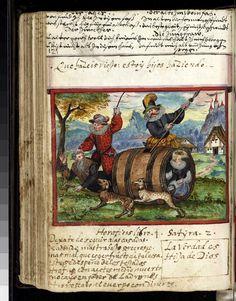 wine-barrel Schwank/fabliau. from Neithard's album amicorum (entries dated 1592-1621), via Herzogin Anna Amalia Bibliothek, Weimar website