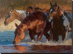 size: Stretched Canvas Print: Four Across Canvas Art by Karen Bonnie : Using advanced technology, we print the image directly onto canvas, stretch it onto support bars, and finish it with hand-painted edges and a protective coating. Horse Canvas Painting, Canvas Art, Animal Paintings, Horse Paintings, Horse Artwork, Horse Drawings, Horse Print, White Horses, Equine Art