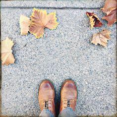 Sidewalk In the autumn  San Francisco, Califórnia