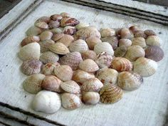 Shell heart We will have to get enough shells when we go to hawaii this year!