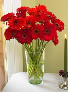 Bright red gerber daisies for the wedding flowers, maybe with some babies breath to accent?