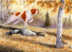 """""""Grouse Scent"""" A Limited Edition Brittany Spaniel Print - Michael Steddum"""