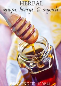 Using Herbs: Herbal Syrups, Honeys, & Oxymels | Growing Up Herbal | Today I'm talking about the sweeter tasting herbal preparations. How to make and use them, and so much more!