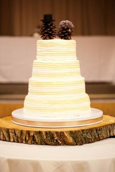 Pine cone #Wedding Cake Topper ... Wedding ideas for brides, grooms, parents & planners ... https://itunes.apple.com/us/app/the-gold-wedding-planner/id498112599?ls=1=8 … plus how to organise an entire wedding, without overspending ♥ The Gold Wedding Planner iPhone App ♥