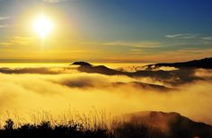 golden fog covering the san francisco bay area