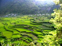 Sagada, Mountain Province in The Philippines Places To Travel, Places To See, Travel Stuff, Banaue Rice Terraces, Countries To Visit, The Day Will Come, Stairway To Heaven, Future Travel, Travel Inspiration