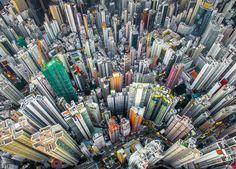 Urban Jungle, Hong Kong, China