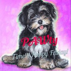This is how we do it...the PAWty's here at Furry Paw!!! Happy Weekend & be sure to place your portrait order!!! www.furrypawpics.com #furrypawlife