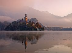 15 Beautiful Castles That Look Like They've Been Taken Out Of Fairy Tales – Dumbo Octopus Beautiful Castles, Beautiful Places, The Places Youll Go, Places To Go, Bled Slovenia, Lake Bled, Beautiful Landscapes, Trip Planning, Paris Skyline