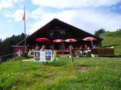 This weeks culture and customs tip is a visit of the Alp Heubühlen with show diary and a hearty dairyman's breakfast.