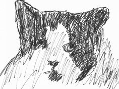 Cat Sketch, Sketches, Illustrations, Abstract, Cats, Artwork, Drawings, Summary, Gatos
