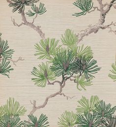 Unused sample. Branch of pine needles and pine cones. Imitation grass cloth. Printed in three greens, two grays on white ground. Embossed. United Wallpapers, Inc.