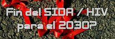 La epidemia del sida podría finalizar en el año 2030. Según los datos de ONUSIDA, cada año hay en el mundo 3 millones de nuevas infecciones ...