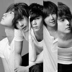SS501, Kim Hyung Joon, Kim Hyun Joong, Park Jung Min, Kim Kyu Joong, Heo Young Saeng, Baby, Mal, Otter, Gorilla, Leader, HJL