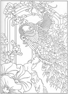 Peacock coloring page 31/31