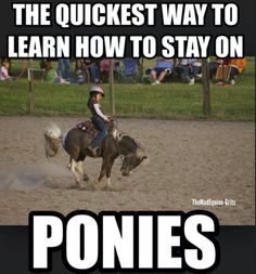 Want to learn to ride? Ride a pony. SO TRUE!!!! Especially shetland ponies.. with welsh ponies coming in a close second.