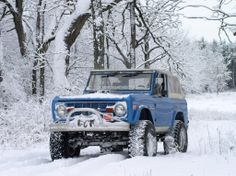 Bronco....Always at home in the Snow