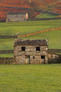 Yorkshire Dales, England by Ray Bradshaw