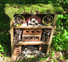 An insect hotel complete with moss roof top garden for insect sun bathing. Bug Hotel, House Bugs, House Yard, Bee House, Eyfs Outdoor Area, Mason Bees, Sensory Garden, Birds And The Bees, Outdoor Classroom