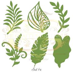 Set 7 Svg Png Dxf 6 different Leaves for Paper Flowers- MACHINE use Only (Cricut and Silhouette) DIY and Handmade Leaves Templates Giant Paper Flowers, Diy Flowers, Wedding Flowers, Paper Butterflies, Leaf Template, Flower Template, Owl Templates, Crown Template, Butterfly Template