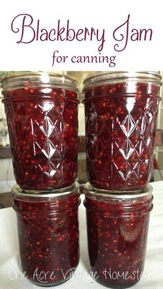 Blackberry Jam for Canning