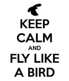 KEEP CALM AND FLY LIKE A BIRD