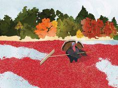 Boston chef Matthew Jennings shares his family secret for cranberry ...
