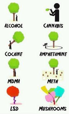 Verschiede Drogen erklärt am Beispiel eines Baums on http://www.drlima.net