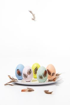 """Flock together for a """"crafternoon"""" of decorating these feathered Easter eggs! We used Martha Stewart's Decoupage Medium for a seamless, matte finish. Shop for your Martha Stewart craft paint supplies at Michaels!"""
