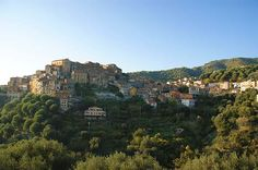 Pisciotta is an Italian town and comune of the province of Salerno, in the region of Campania