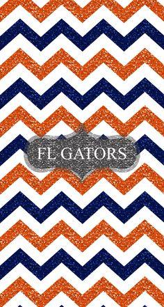 568 Best Florida Gators Images
