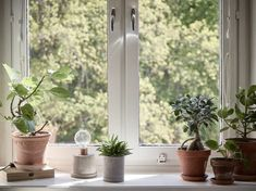 Våra Hem – Historiska hem Bay Window, Plant Decor, Greenery, Sweet Home, Windows, Living Room, Plants, Beautiful Things, Home Decor