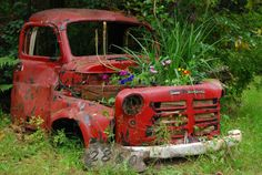 You can always turn it into a planter. My old '81 Toyota is going this route soon. that way, I can keep it forever!