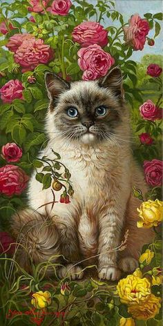 -Beautiful Cat Drawing ❤ Beautiful Cat Drawing ❤ See it I Love Cats, Crazy Cats, Cool Cats, Pretty Cats, Beautiful Cats, Beautiful Flowers, Siamese Cats, Cats And Kittens, Hairless Cats