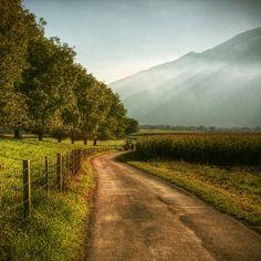 Take me home... country roads