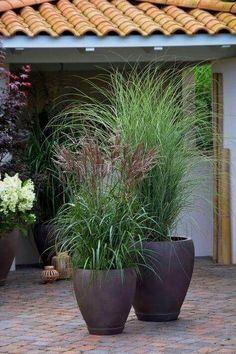 37 Flower Landscape Design Ideas to have a Colorful Garden « Garten Garden Troughs, Garden Planters, Garden Beds, Planters Flowers, Rocks Garden, Box Garden, Garden Art, Amazing Gardens, Beautiful Gardens