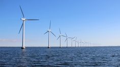 An offshore wind farm. Image: Thinkstock