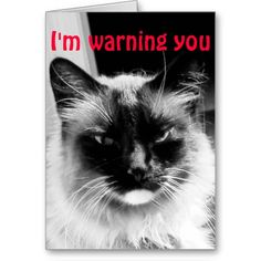 Want to say be my valentine with a touch of humor? This Valentine's Day card features a cute frowning cat who looks grumpy if do not say yes to be my valentine