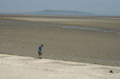 Sandymount Strand - Wetlands Wildlife Reserve in Dublin Ireland Dublin Bay, Dublin Ireland, Concrete Bath, Irish Free State, Dublin Airport, James Joyce, Republic Of Ireland, Vintage Photos, Wildlife