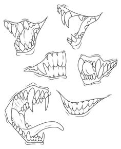 Teeth and jaws reference