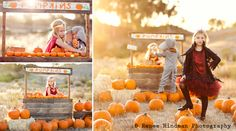 This is what I am doing for my pumpkin patch sessions!