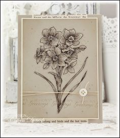 Dietrich Designs - Monochromatic Paperwhites Christmas card, using a stamp set from Flourishes by the same name, illustrated by the talented Marcella Hawley.  :)