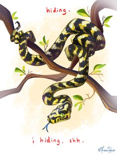 Snake Drawing, Snake Art, Animals And Pets, Cute Animals, Baby Snakes, Cute Snake, Character Design References, Creature Design, Animal Drawings